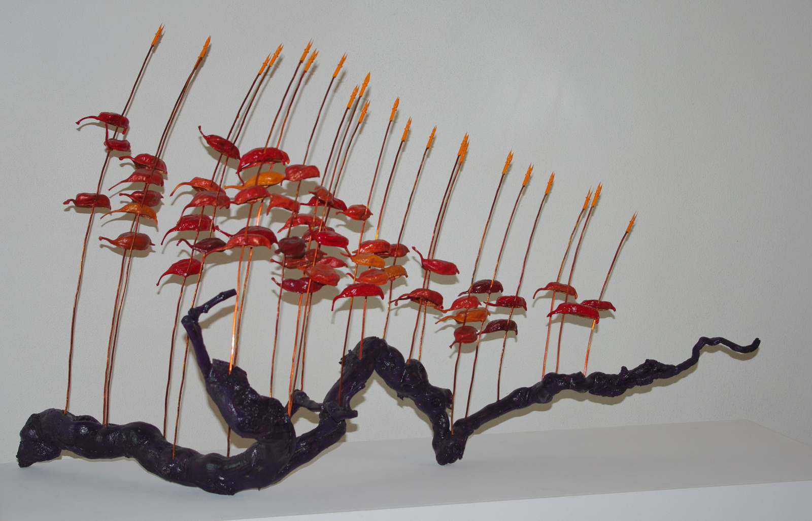 2014<br>110 x 30 x 60 cm<br>vine, copper wire, capsules, crown nibs