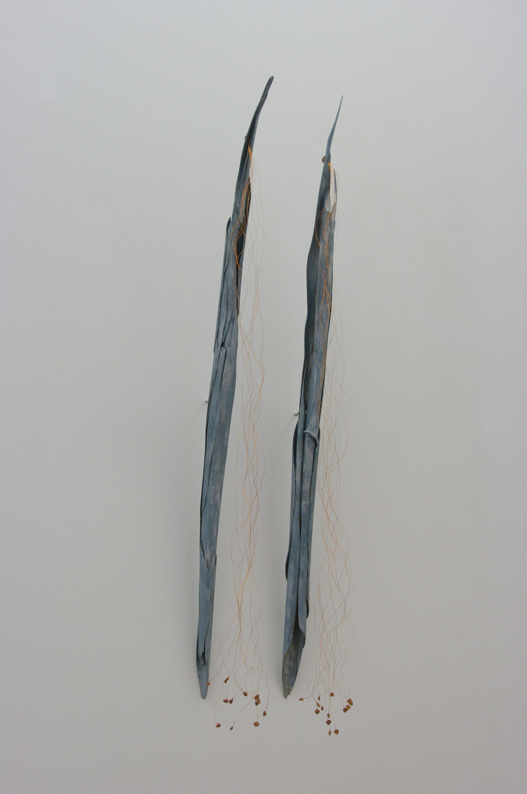 2006 sold<br>90 x 8 x 9 cm each<br>barkof eucalyptus, copper wire, cork